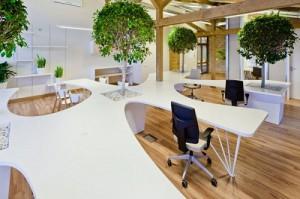 Văn phòng xanh độc đáo
